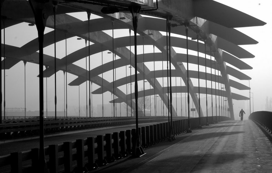 Tolerance And Apathy Are The Last Virtues Of A Dying: Some Bridges Just Look Right.