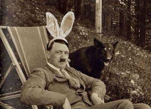 512_626977b07722bfadolf_funny_rabbit_e.jpg?t=127