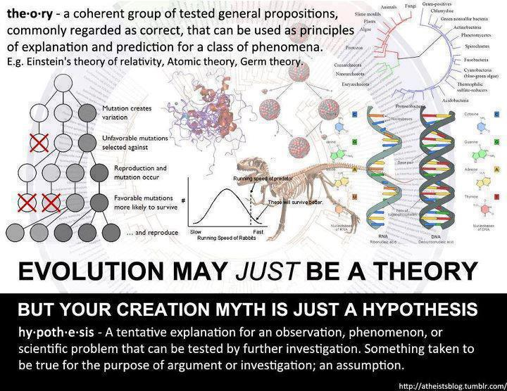 an analysis of the theory of evolution creationism and the return of scientists to religion