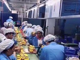 Praca marzeń w azjatyckiej fabryce