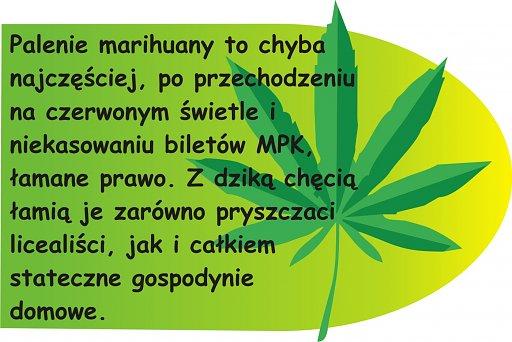 Palenie marihuany to najcześciej łamane prawo. Trawę palą licealiści i gospodynie domowe.