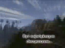 Chrząszcz - nowy super film w kinach