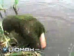 Jak zostać wodnikiem szuwarkiem w 5 sekund